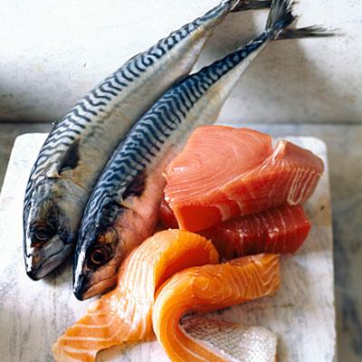 fish-memory-salmon