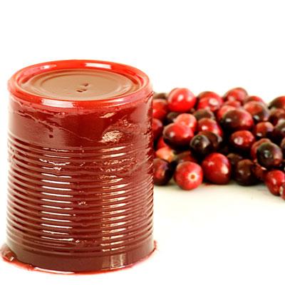 cranberry-can-sauce