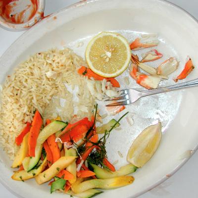 half-food-plate