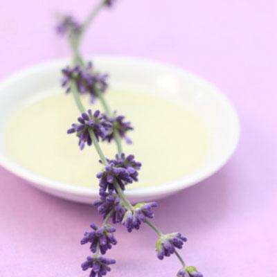 Sleep lavender