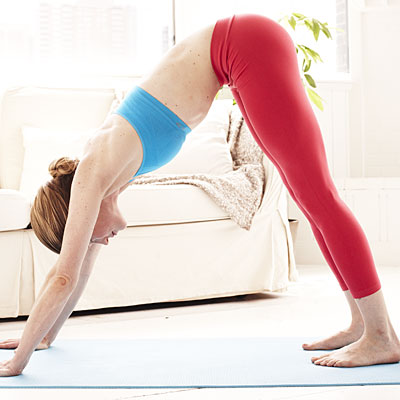 downward-dog-red-20501331