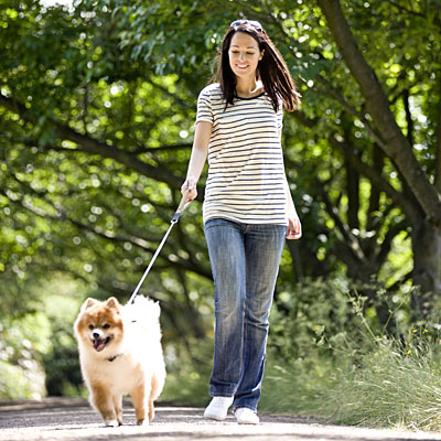 stripes-walking-dog