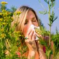 sneeze-allergy