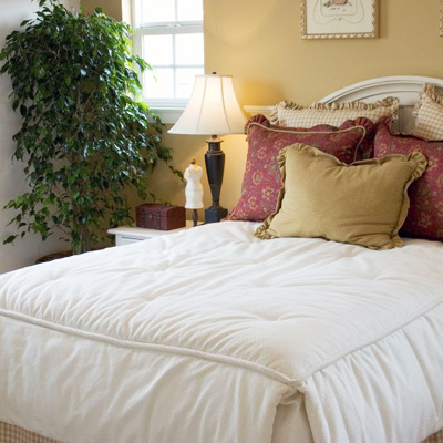 feng shui tips turn your new york rental apartment