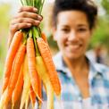 bunch-carrots-farm