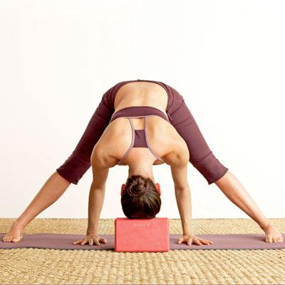 Yoga     on Easy Moves Yoga