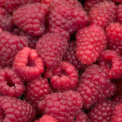 fiber-raspberries-snack