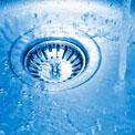 sink-food-bacteria