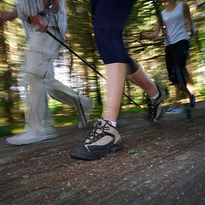 nordic-walk-poles