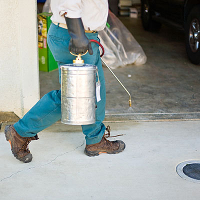 pest control chemicals