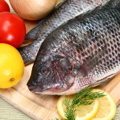 fish-recipes