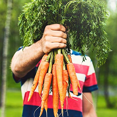 carrots-good-eyes