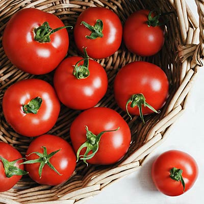 tomatoes-recipes
