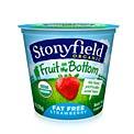 stonyfield-organic-fruit