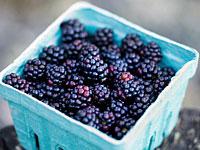 blackberries-superfruit