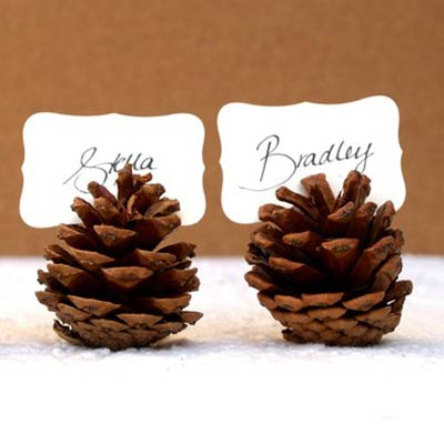 pine cone placecards 400x400 Favorite Pins of the Week: Fun Thanksgiving Ideas