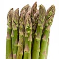 asparagus_burn_fat