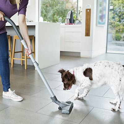 dog-pet-vacuum