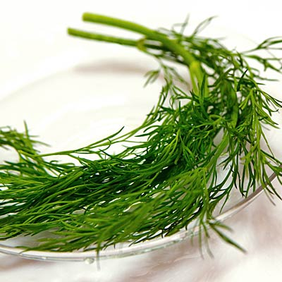 Dill - The Best Herbs to Grow and Eat at Home - Health.com