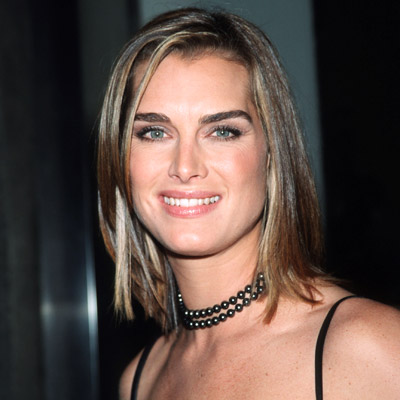 Brooke Shields, Transformation, Suddenly Susan, celebrity hair, celebrity makeup