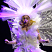 See Lady Gaga's Crazy Monster Ball Tour Costumes