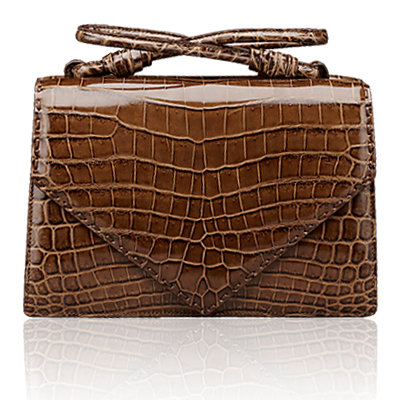 Bottega Veneta bag