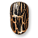 nails - leopard print - runway - dolce & Gabbana