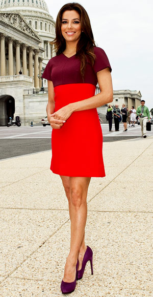 Eva Longoria - Victoria Beckham - Colorblock - Petite - Trends by Shape - Look Your Best