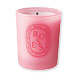 Diptique Roses Mini Pink Candle
