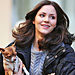 Celebrity Pets: Katharine McPhee and Jessica Chastain Love Their Dogs