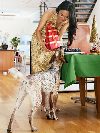 Pets, Holiday Shopping