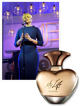 My Life Mary J Blige