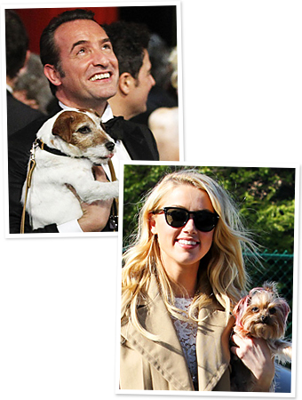 Jean Dujardin, Uggie, Amber Heard