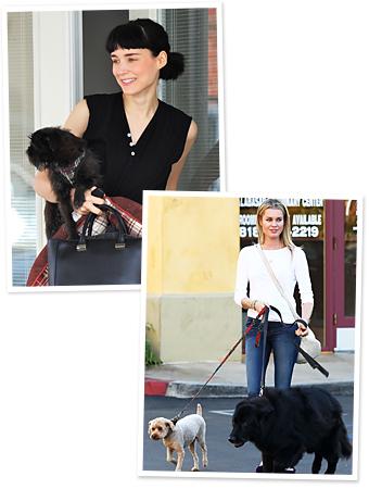 Rooney Mara, Rebecca Romijn