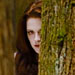 First Look: The Twilight Saga: Breaking Dawn&mdash;Part 2