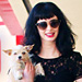 Celebrity Pets: Zac Efron and Krysten Ritter&#039;s Furry Friends