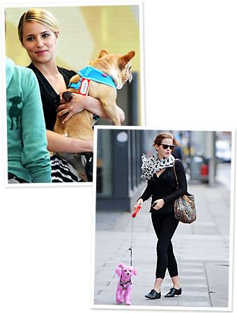 Dianna Agron, Emma Watson