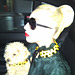 Gaga Matches Her Dog, Oprah Talks to Rihanna, and More