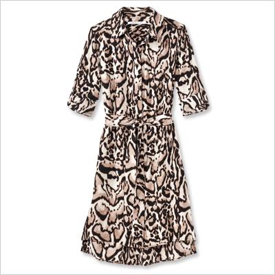 Look of the Day photo | Diane von Furstenberg Shirtdress