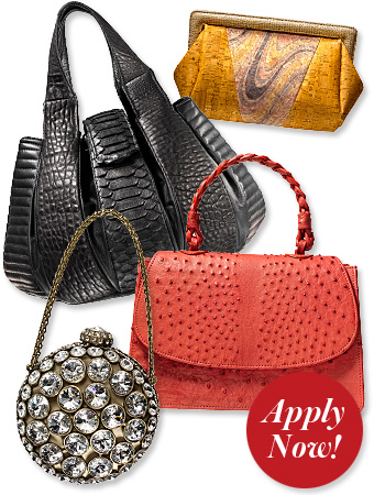 Handbag Designer Awards