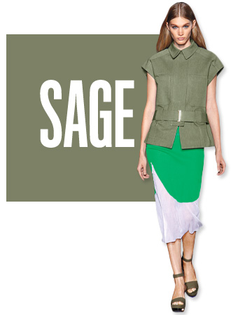 Sage Color of the Day