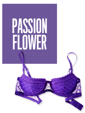 Passion Flower Color of the Day