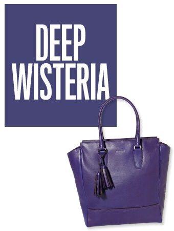 Deep Wysteria Color of the Day