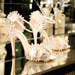 Launch You'll Love: Brian Atwood's Bridal Shoe Collection