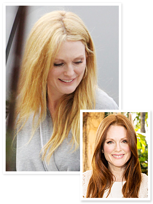 Julianne Moore Blonde Hair