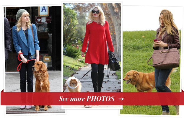 Dog-Walking Outfits