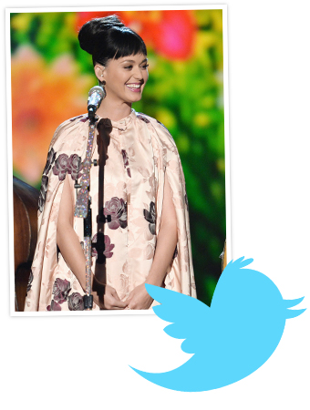 Katy Perry Hits 1 Million Twitter Followers