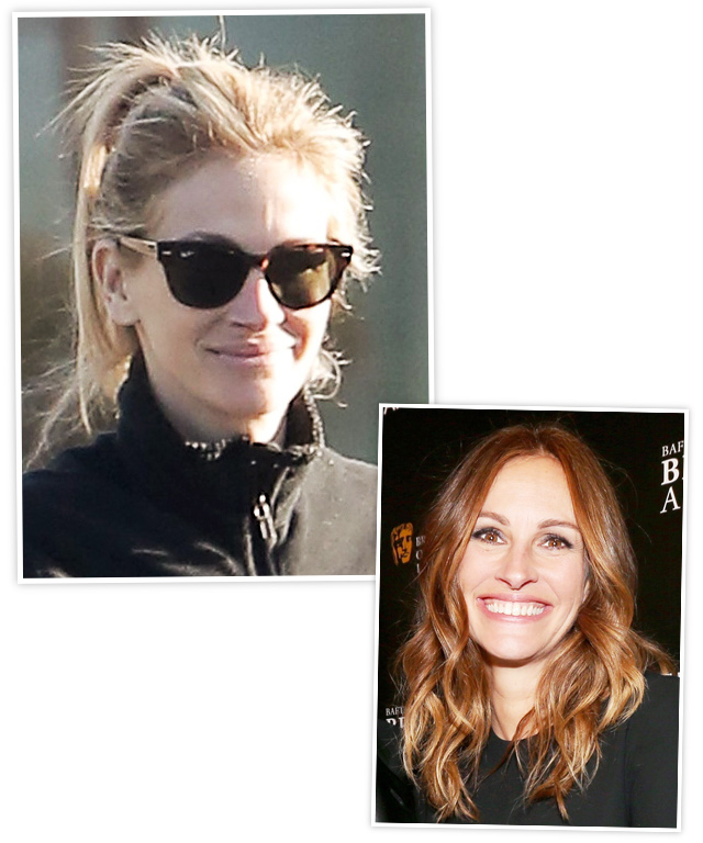 Julia Roberts Blonde Hair