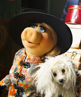 Miss Piggy Fashion