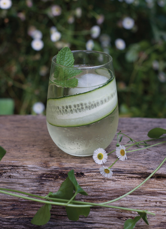 Cocktail: Cucumber Spritzer - Throw a Gorgeous Summer Dinner Party ...